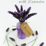11 Things to do with Lavender