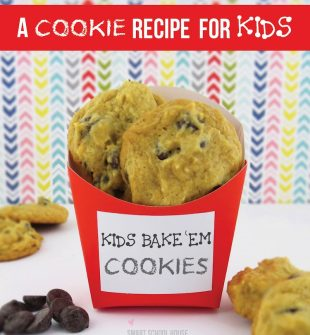 Chocolate Chip Cookie Recipe for Kids