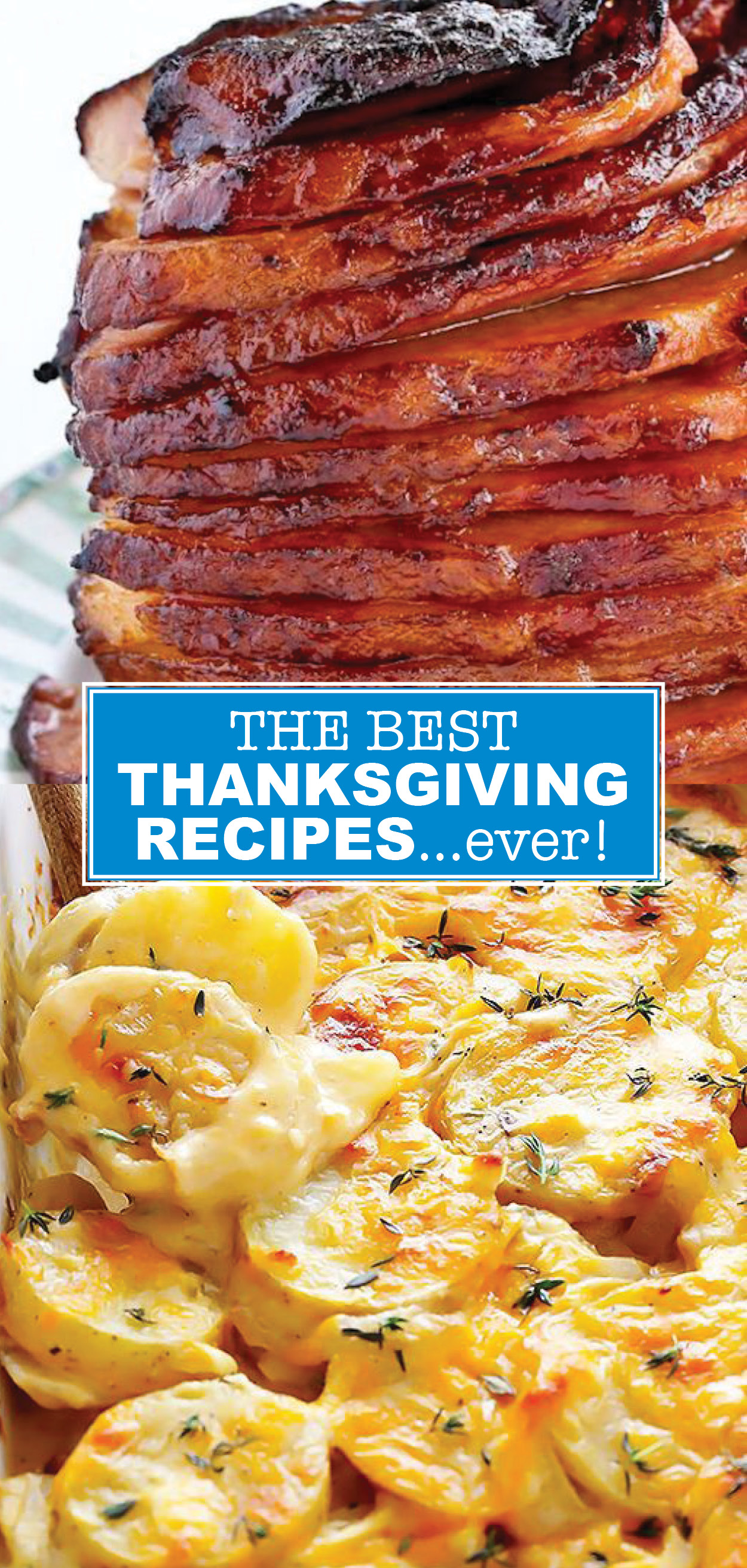 The BEST Thanksgiving Recipe Ideas , Look No Further!!!