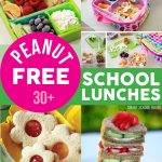 Peanut Free School Lunches