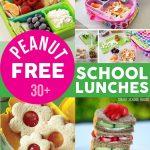 Peanut Free School Lunches