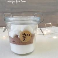 Hot Cocoa Recipe for 2