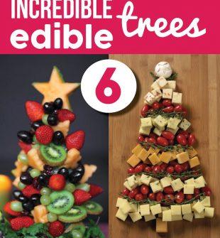 Christmas Tree Fruit Platter.Fruit Platter Christmas Tree Archives Smart School House