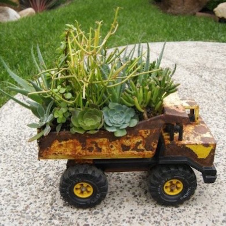 TRUCKULENTS - Plant succulents in old Tonka Trucks. So creative!