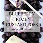 Dixie Cup Frozen Yogurt Popsicles