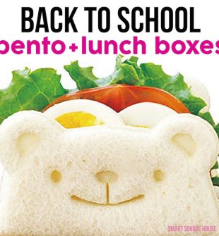 Back to School Bento + Lunch Boxes