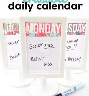 Free Erasable Daily Calendar