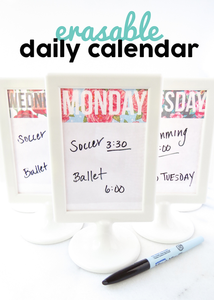 Free Erasable Daily Calendar