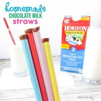 Homemade Chocolate Milk Straws