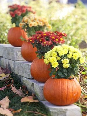 Create a Blooming Pumpkin Centerpiece the Easy Way!