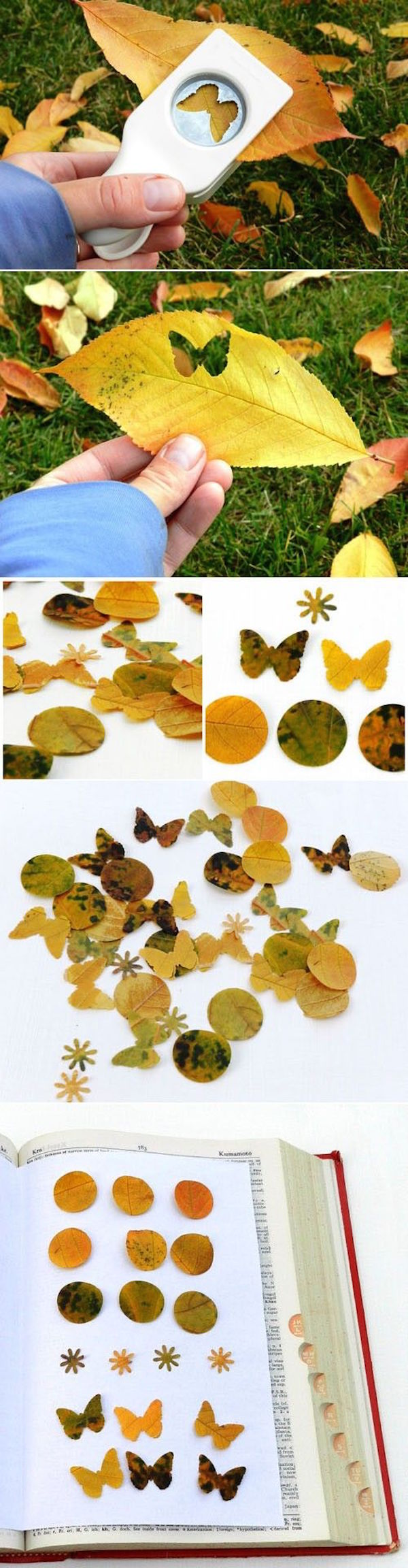 Make nature inspired confetti to decorate for the fall using fall leaves and hole punchers.