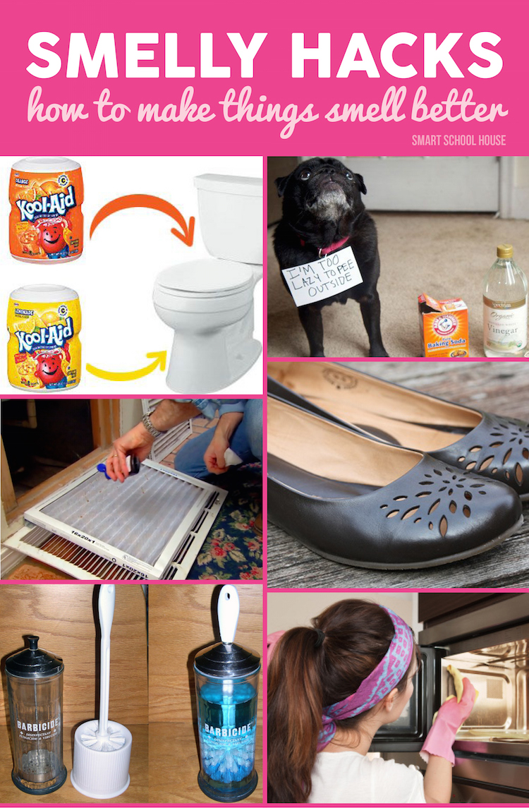Smelly hacks for Things to make your house smell good