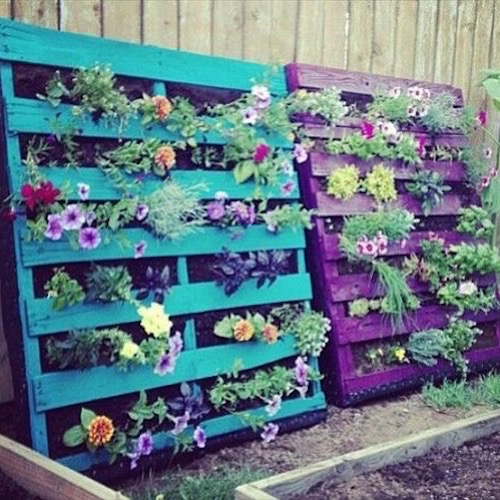 PAINT PALLETS AND MAKE A VERTICAL GARDEN - love!