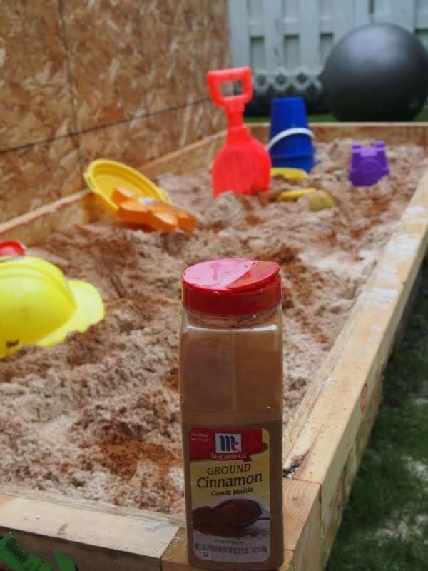 You can keep bugs out of the sandbox by adding an all-natural bug repellent: CINNAMON!