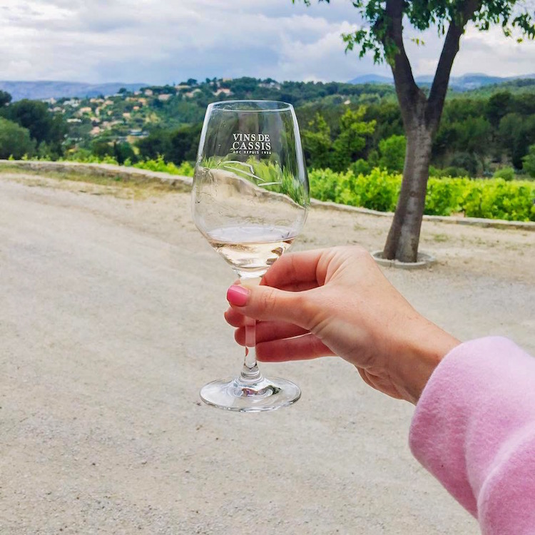Wine tasting in the south of France.
