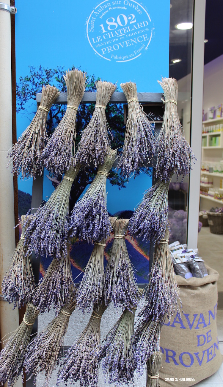 Dried lavender in France