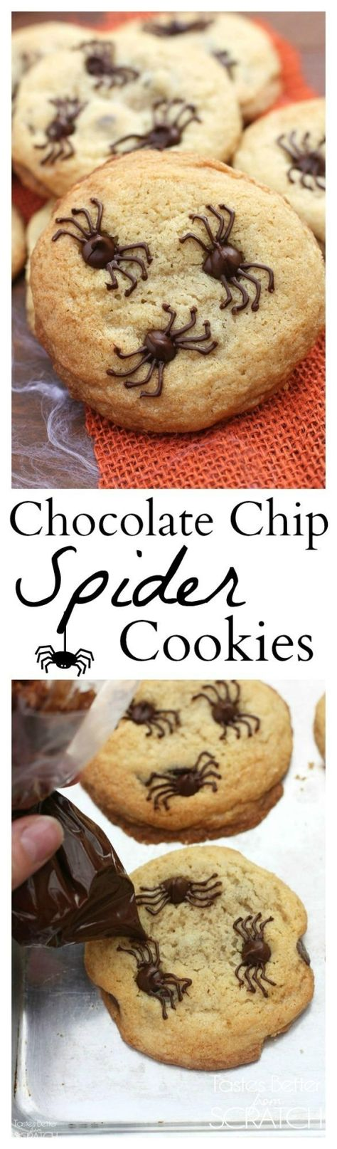 Chocolate Chip Spider Cookies make the perfect fun and easy Halloween treat!