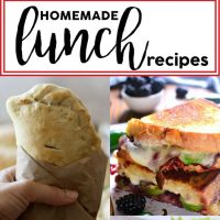 Homemade Lunches