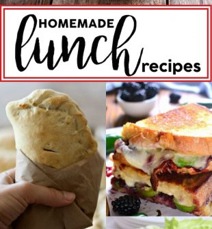 Lunches can get boring. And, who can afford to eat out all the time? Not ME! Here are some really nutritious and neat homemade lunch recipes and ideas that you can make for yourself.