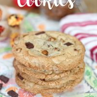 Pumpkin Spice Cinnamon Chip Cookies