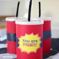 You Are Dynamite Pringles Can