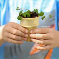 Ice Cream Cone Seedling Garden