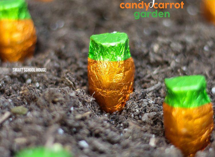 Candy Carrot Garde..