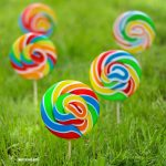 Skittles Lollipop Garden Seeds