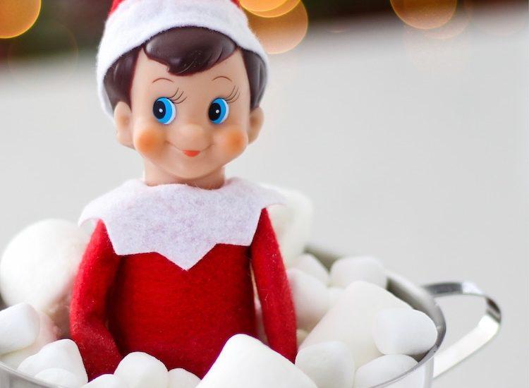 Elf on the Shelf i..