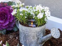 Watering Can Centerpiece #wateringcan #centerpiece #gardendecor #homedecor