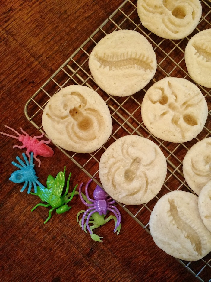 Insect Sugar Cookies - Creepy bug insect sugar cookies perfect for a kid or adult Halloween party. They look so cool, double as decoration and are so easy to make!