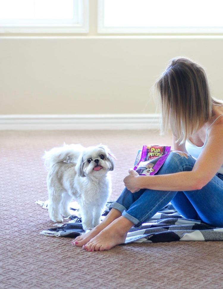 Smart Sticks Dog Treats