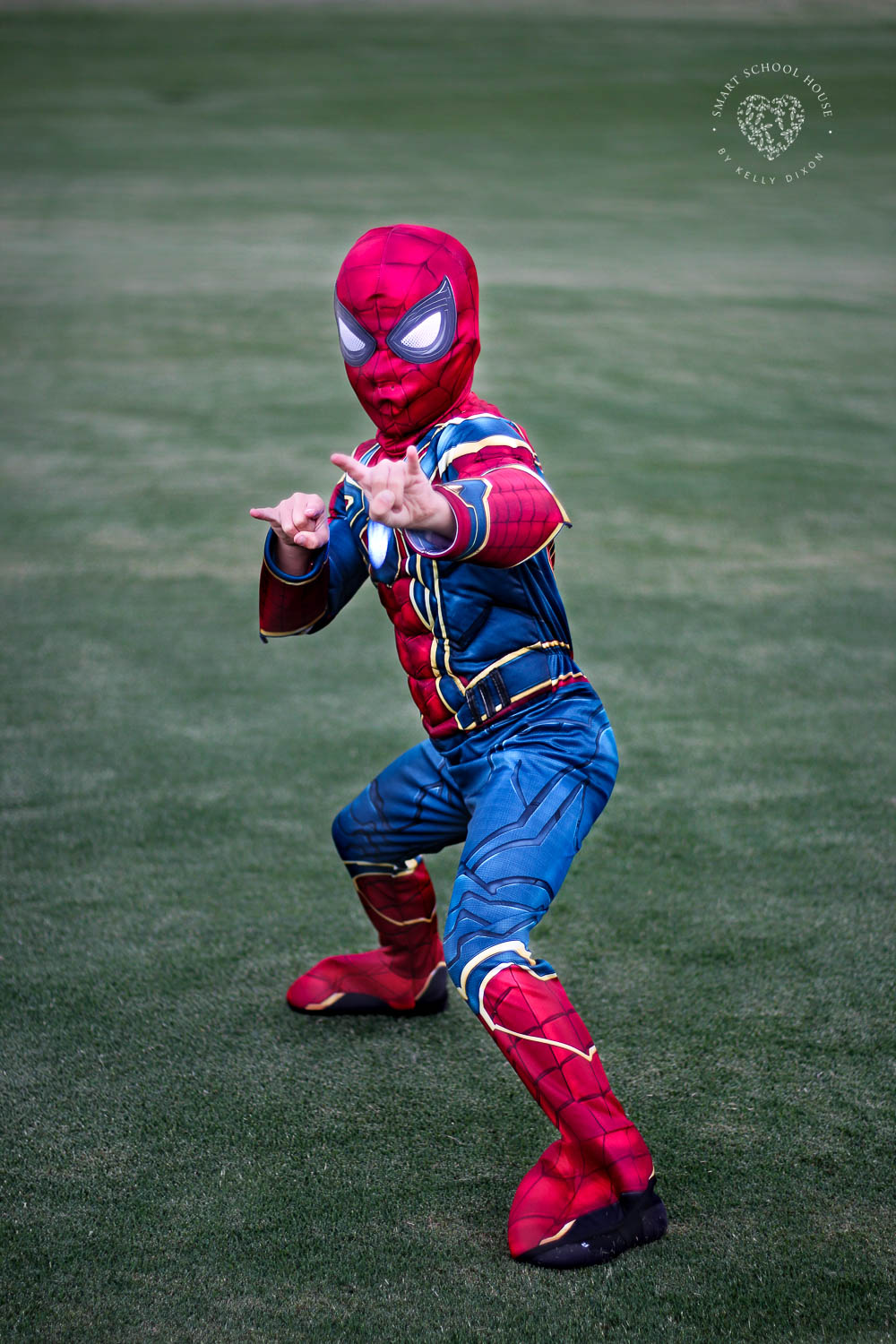 Boys Iron Spider Halloween costume for $15