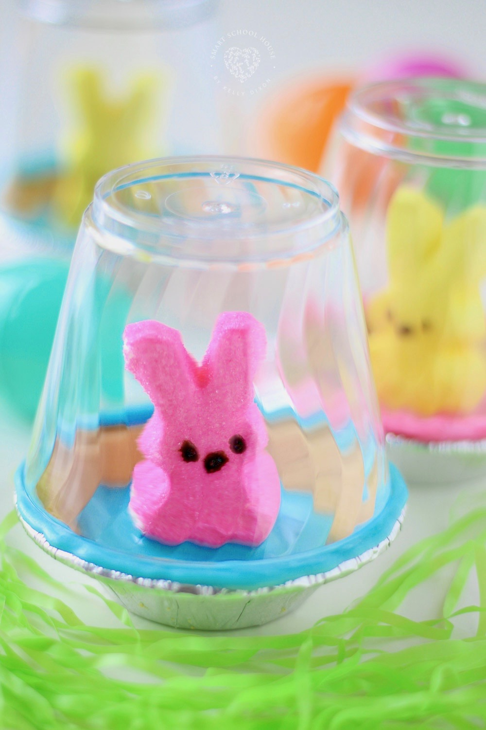 An edible Pet Peep for Easter. Pet Peeps are housed in a graham cracker bowl habitat and enclosed with a clear surrounding. #EasterCraft #Peeps